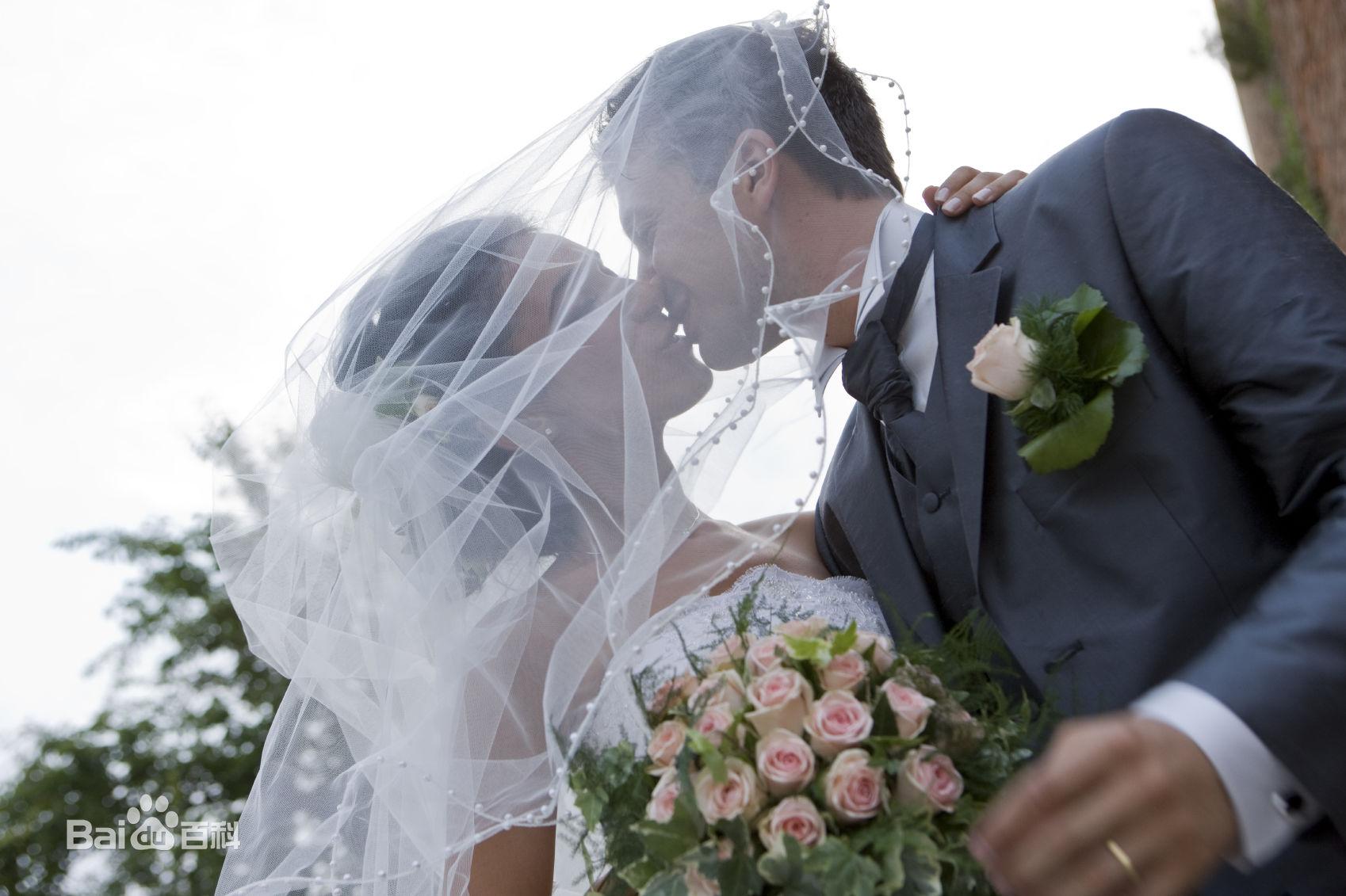 短篇精品小说《爱情太难,婚姻太痛》全文在线阅读