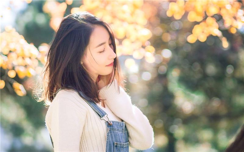 伤心爱情守则小说免费阅读完整版