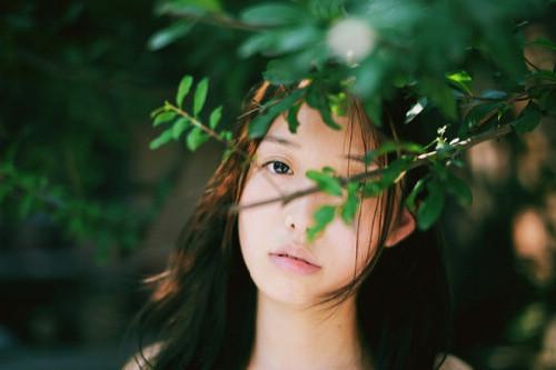 言情小说《微风飞过蔷薇》新章节全文在线阅读