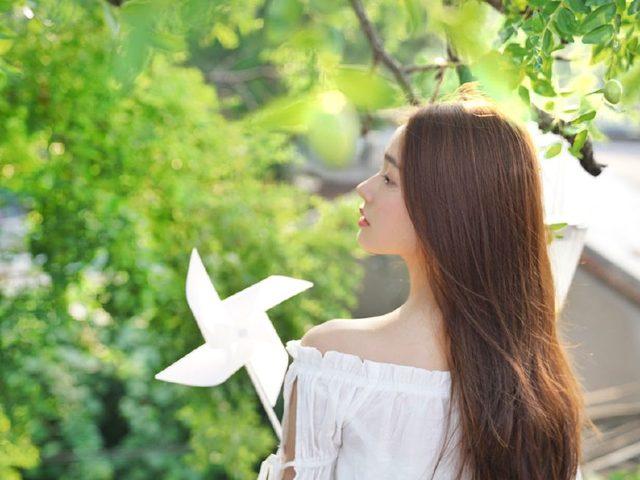 新书上线《微风飞过蔷薇》小说完结全文免费阅读新章节