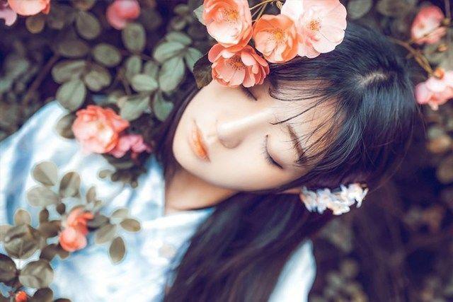 爱与梦的流浪者小说全文免费阅读(楚云深韩瑾归)