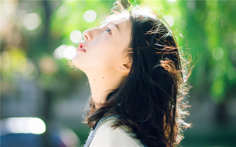 微风飞过蔷薇小说全文免费在线阅读 微风飞过蔷薇阅读免费