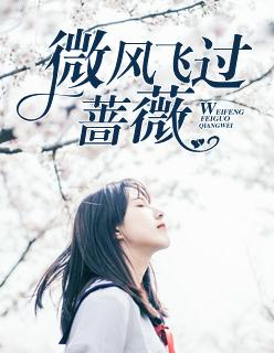 微风飞过蔷薇小说全文免费阅读新章节