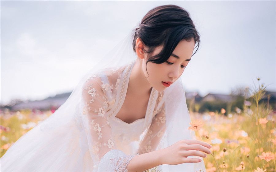 热门言情小说《惟愿与君不相识》全文免费在线阅读